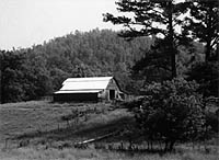 Adams, Tennessee Farmland