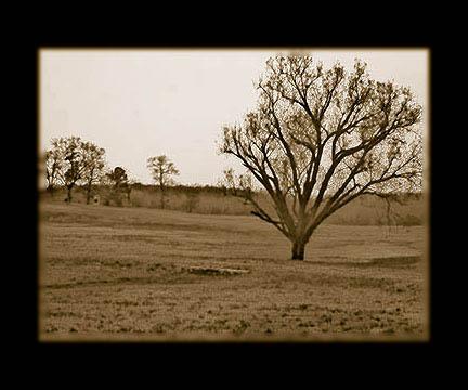 Haunted Chickamauga Battlefield