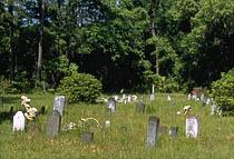 Sapelo Island Cemetery