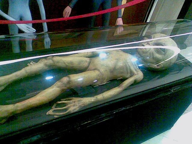 Alien UFO museum display