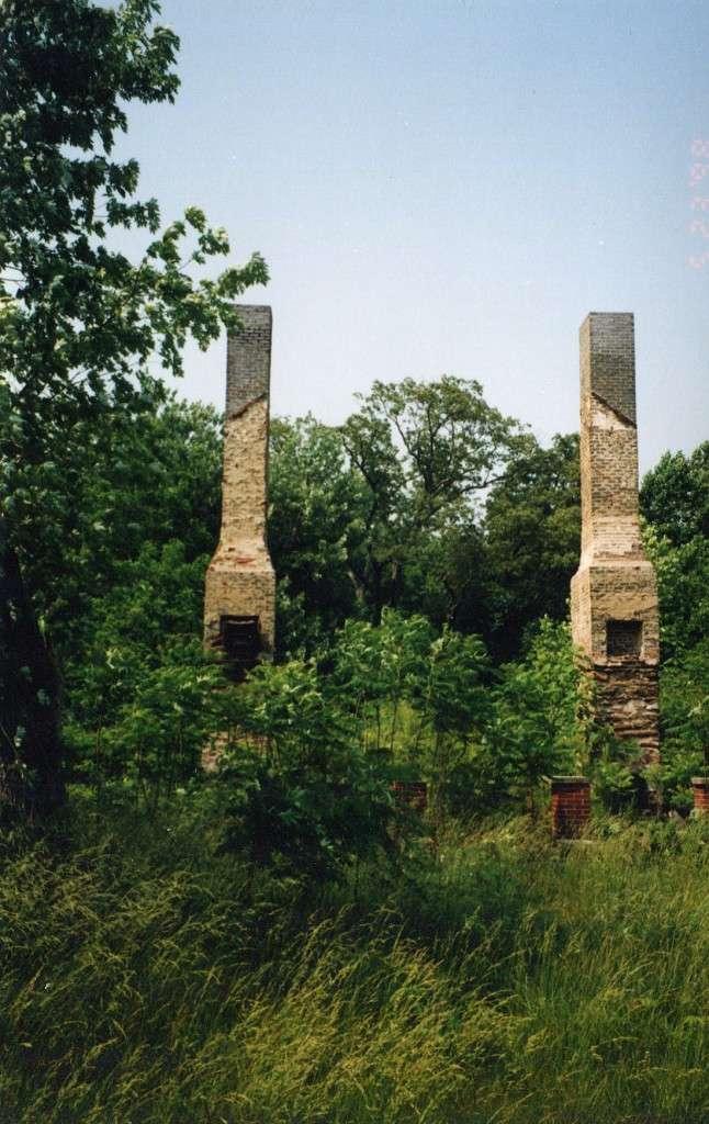 Chimneys at burnt Mississippi rural home.